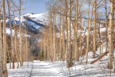 red_cloud_deer_valley_lot_12_ski_outsmall_400